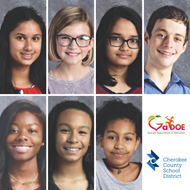 state superintendent student advisory council 2019-20