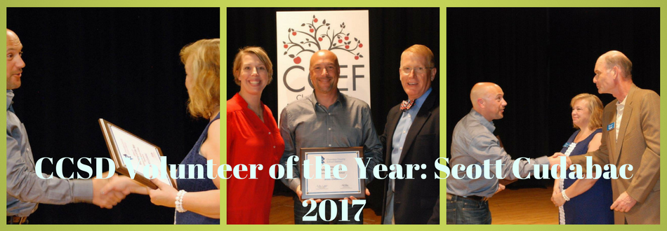 CCSD Volunteer of the Year
